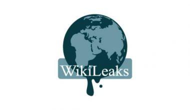 Wikileaks'in kurucusu Julian Assange gözaltında