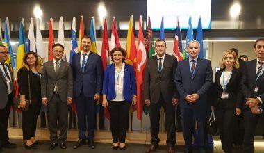 Bakan Yardımcısı Meşe DSÖ 68. Avrupa Bölge Komitesi Toplantısı'na Katıldı
