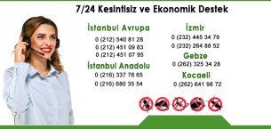 İstanbul Tuzla Böcek İlaçlama